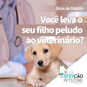 stetcao-03